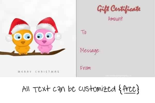 christmas gift certificate template with two cute owls on a branch